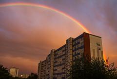 Regenbogen über Magdeburg (Helmut44) Tags: deutschland germany sachsenanhalt magdeburg regenbogen abendstimmung farbenfreudig evening gebäude haus building house naturwunder himmel