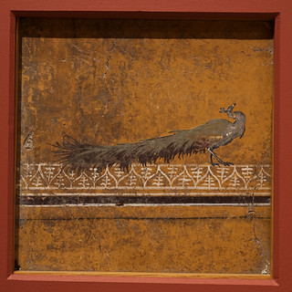 Fragment of Roman wall painting from Pompeii, depicting a peacock