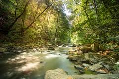 von Thale nach Treseburg,  river Bode,  Harz Mountains (u-click) Tags: forest harzmountains wandern vonthalenachtreseburg bodetal haidafilter sun water sonya6300 harz sunday samyang12mm thale riverbode gorillapod river chalkstream