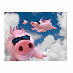 Funny Sky Diving Flying Pigs Blanket (mywowstuff) Tags: gifts gadgets cool family friends funny shopping men women kids home