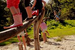 klimmen (regionaal landschap Schelde-Durme) Tags: waasmunster kinderen pdpo lia natuurbeleving hooiland speelnatuur landschap landbouw biodiversiteit samenwerken