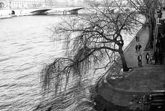 paris... (andrealinss) Tags: france frankreich paris parisstreet analog leica leicam6 35mm andrealinss schwarzweiss street streetphotography streetfotografie bw blackandwhite