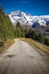 The Path (glank27) Tags: trail mountain italy valle daosta karl glanville canon eos 5d mk iv ef landscape path grand combin alps colours nature 50mm prime f18ii