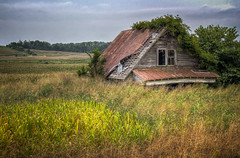 I think it's time to mow the lawn. (donnieking1811) Tags: kentucky albany house dilapidated abandoned overgrown exterior outdoors grass sky clouds hdr canon 60d lightroom photomatixpro