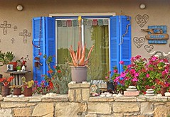 Art gallery (majka44) Tags: art blue cyprus travel flower colors facade stone fence light day cactus huse building architecture