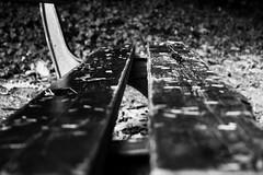 Absence (LUMEN SCRIPT) Tags: perspective pov dof monochrome seat bench conceptphotos