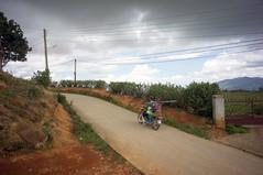 (kuuan) Tags: voigtländerheliarf4515mm manualfocus mf voigtländer15mm aspherical f4515mm superwideheliar apsc sonynex5n street road landscape countryside farmer motorbike vietnam vietnamese dalat