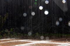 Rainy day (jannaheli) Tags: suomi finland helsinki arabia luonto nature luontovalokuvaus naturephotography nikond7200 outdoor sunnyday sunday syksy autumn arabianranta rainyday