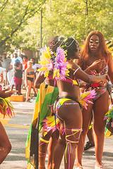 1364_0656FL (davidben33) Tags: brooklyn new york labor day caribbean parade festival music dance joy costume maskara people women men boy girls street photos nikon nikkor portrait