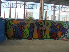 481 (en-ri) Tags: sanar localz crew arancione blu rosso verde viola arrow parco dora torino muro graffiti writing wall