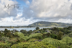 Coromandel vista. (miketonge) Tags: pauanui tairua newzealand northisland coramandel slipperisland ferns sea water mountains vista