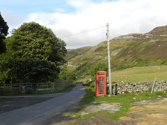 Red Phonebox, Loch Eriboll Estate, Sutherland, Aug 2018 (allanmaciver) Tags: red phone box telephone iconic telegraph pole stone dyke trees loch eriboll sutherland estate scotland road drive enjoy allanmaciver