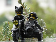 Did I ever tell you... (captain_joe) Tags: toy spielzeug 365toyproject lego series15 minifigure minifig thief jewell cathryn catwoman motorrad motocycle motobike rain regen