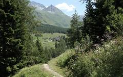 et retour au village de Ferret où se trouve ma voiture. (bulbocode909) Tags: valais suisse valferret laléchère forêts arbres sentiers ferret villages hameaux montagnes nature vert fleurs