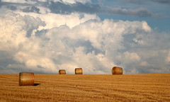 Cieli d'estate - Summer skies (Raffa2112) Tags: campagna estate nuvole cielo rotoballe countryside sky clouds haybales canoneos750d raffa2112