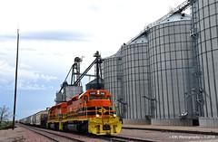 On the Move at Wall (GRNDMND) Tags: trains railroads rcpe rapidcitypierreeastern gw locomotive emd sd402 wall southdakota