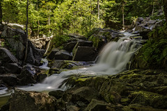 Lush (Kevin Tataryn) Tags: waterfall gatineau park historic meech lake river flow summer green longexposure landscape canada woods forest rocks nature nikon d500 1755