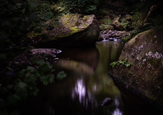 Summer Shade (Explored 21.8.2018) (neil 36) Tags: waterfall summer shade rocks moss ferns shady nook