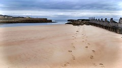 Walk Beside Me (Michelle O'Connell Photography) Tags: scotland coast beach lossiemouth nature coastline branderburgh elgin sand footprints michelleoconnellphotography landscape scottishhighlands scottishlandscape