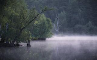 morning at lakeside