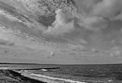 über Ostsee (Wunderlich, Olga) Tags: ostsee dranske rügen inselrügen steine himmel wolken gänse vögel holzbuhne wellen wind schwarzweis natur landschaft mecklenburgvorpommern