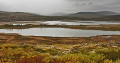 **Einunndalen** (**klaracolor**) Tags: klara klarathomas klaracolor noorwegen norge norway hedmark water lake mountain mountains rain rainyday rock rocks clouds darkclouds green autumn autumncolors