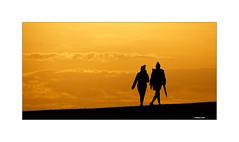 Der Abendsonne entgegen (Babaou) Tags: sonnenuntergang abend abendhimmel silhouette dxopl