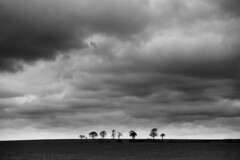 20180311 (Homemade) Tags: trees sky clouds horizon sonydscrx100 fields countryside coventry blackandwhite coombeabbey warwickshire