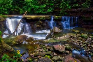 Great Falls of Tinkers Creek #1
