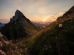La Gruyère - Jaun / Ref.02362 (FRIBOURG REGION) Tags: suisse switzerland schweiz fribourgregion fribourgrégion lagruyère jaun grandtourdesvanils été sommer summer préalpes voralpen prealps alpes alpen alps montagne mountains berge colduloup leverdesoleil sunrise sky himmel ciel sonnenaufgang ch flancdemontagne gebirge paysage landschaft landscape