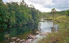 A Small Watercourse (Ronaldo Vieira de Carvalho) Tags: voigtländer bessamatic color skopar kodak portra