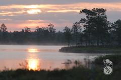 Over the water (Storm'sEndPhoto) Tags: sunrise sunset morninglight sun aurinko lake mist järvi kauhaneva kauhanevanpohjankankaankasallispuisto nationalpark kansallispuisto finland suomi nordic landscape landschaft