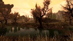 Solitude marsh (hellenielsen1) Tags: specialedition skyrim skyrimspecialedition skyrimse landscape marsh nature itjustworks bethesda trees tree water forest wood solitude grass sunset gaming gamingshots femalegamer screenshot thenorth yellow mountain mountains