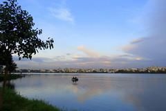 IMG_4962 (mohandep) Tags: madivala lakes bangalore wildlife scenery sun flowers insects birding buses