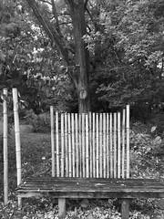 Cylburn Arboretum (karma (Karen)) Tags: baltimore maryland cylburnarboretum parks benches fences bamboo mono bw hss hbm iphone cmwd