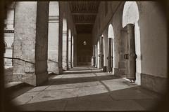 Les Invalides 2 (hamsiksa) Tags: france paris landmarks architecture baroque 17thcentury louisxiv soldiershome 7emearrondisment film monuments historic historique monochrome sepia