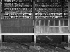 Itsukushima Votive Wall, Miyajima  宮島 広島 (Anaguma) Tags: japan hiroshima miyajima itsukushima shrine black white