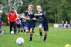 Feriencamp Schwabstedt 13.08.18 - d (47) (HSV-Fußballschule) Tags: hsv fussballschule feriencamp schwabstedt vom 1308 bis 17082018