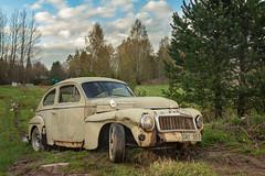 544 (mariburg) Tags: rotten marode ruin decay desolate cars rustycars auto canoneos6d sigma35mm14dghsmart volvo 544