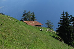 Langemo 1538 mètre (bulbocode909) Tags: valais suisse langemo mex alpages alpagedelangemo montagnes nature arbres forêts sentiers vert cabanes bergeries fontaines