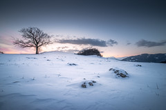 It is getting cold (Toukensmash) Tags: cold winter snow snowing white mountain landscape scene rocks snowy tree trees hill hdr sun setting sunset red yellow pentax k1 rokinon 14mm wide angle lens styria steiermark leoben austria österreich europe alps göss