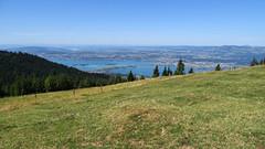 Zürichsee mit Seedamm (uwelino) Tags: switzerland schweiz swiss suisse swisstravel swisstravelspectacular kanton schwyz 2018 europa europe zürichsee