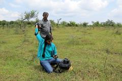 IMG_6200 (mohandep) Tags: hessarghatta lakes karnataka butterflies birding nature wildlife insects signs food