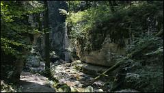_SG_2018_08_6026_1_IMG_9599 (_SG_) Tags: switzerland magglingen twannbach ravine schweiz swiss wanderung hike hiking twannbachschlucht twann lake biel bieler see rock walls stein felsformationen water fluss geology river canyon fairytale lanes chasserals cure path
