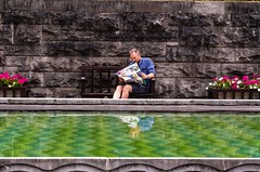 Parco della Rimembranza / Remembrance Park of Dublino (Ireland) (giannizigante) Tags: dublino irlanda remembrance park