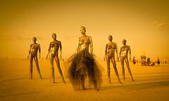 Robot Formation (Stuck in Customs) Tags: blue burningman 20181 2018 desert sand sandstorm dust dress fancy costume fashion metal robot cyborg stance reflection treyratcliff stuckincustoms stuckincustomscom