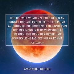 Bibelzitate | Joel 2,30-31 (bibel online) Tags: gott herr glauben geist
