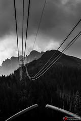 wier_bw_01 (Dorota Marta) Tags: zakopane tatry tatrypolski góry mountains kasprowy
