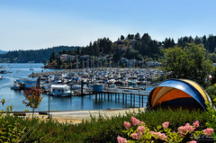 Winegarden Waterfront Park (SonjaPetersonPh♡tography) Tags: sechelt thesunshinecoast sunshinecoast bc britishcolumbia canada gibsons gibsonslanding winegardenwaterfrontpark gibsonsharbour howesound winegardenpark waterfront marina gibsonsmarina summer 2018 park bcparks boats