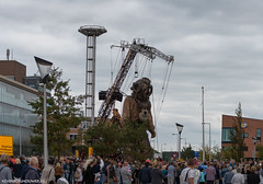 The Giants ,Royal de Luxe in Leeuwarden Netherlands